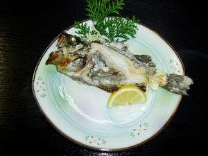 お客様が宿前桟橋で釣られたメバルの塩焼きです