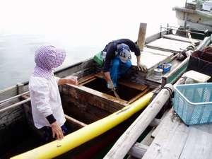 """いつも一緒""""夫婦舟""""いつもお魚獲っていただいています"""