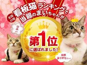 天童温泉 松伯亭 あづま荘:看板猫ランキング全国1位受賞記念!