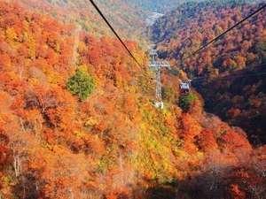 ホテル湯の陣:秋の紅葉「谷川岳ロープウェイ」