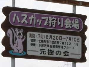ハスカップ狩り祝!道東道開通で釧路まで近くなりました!