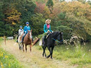 長閑な山間の道を乗馬で散策☆ こんな体験ができるのもパッピホースファームならでは。