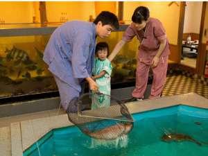 赤穂温泉 鹿久居荘(かくいそう) 赤穂店:*ご注文の魚を、お客様ご自身で水槽から網ですっくて頂くことが出来ます。