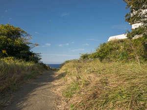 亀島遊歩道でのんびり散策