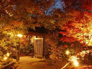 日本三美人の湯 湯宿 草菴(草庵)の写真