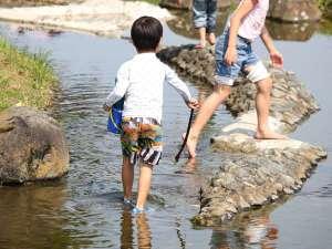 千丈温泉 岩魚と山菜料理の宿 清流(せいりゅう):宿の目の前の川は、流れが穏やかで小さなお子様も安心して水遊びが楽しめます。