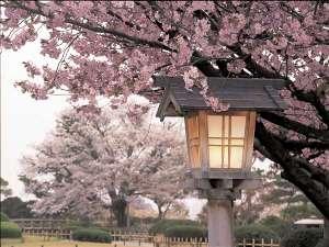 ホテル日航金沢:お出掛けしたくなる春、ぶらぶら歩きながら金沢観光をお楽しみくださいませ。