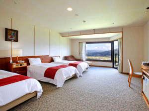 リラックスリゾート ホテルグリーンピア南阿蘇:洋室