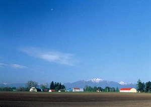 十勝らしい春の畑作風景、遠い山には残雪が・・・!撮影地:帯広市