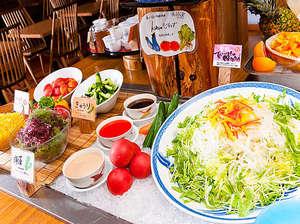 お茶の水 ホテルジュラク:シャキシャキ食べる新鮮野菜にお子様も野菜好きに大変身!?