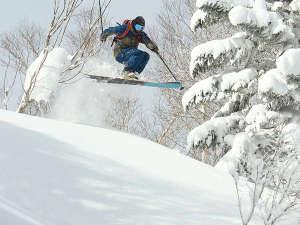安比ヒルズ白樺の森(旧安比グランドヴィラ):安比高原スキー場。深雪も、さらさらも、多彩なコースと雪質が自慢です!