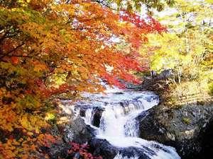 ※◆三階滝◆鮮やかな赤や黄色に色づいた紅葉風景