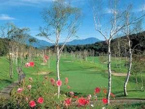斑尾東急リゾート ホテルタングラム:◆白樺の美しい高原ゴルフ ホテルの1階がゴルフのスタートです☆