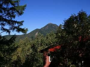 森のペンション リトルフットの写真