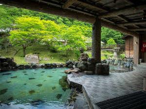 千二百年の湯めぐり 大沢温泉 賢治ゆかりの自炊部「湯治屋」 :新緑、大自然の景色を見ながらの混浴露天風呂大沢の湯