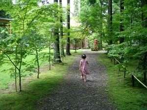 Aso Country Life 六月の風