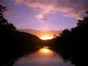 エコヴィレッジ西表:マングローブの夜明け