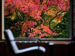 女性のための宿 翠蝶館:2017年10月10日の風景/1階客室より