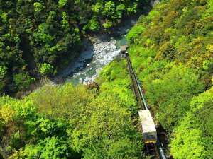 和の宿 ホテル祖谷温泉:新緑の渓谷~鮮やかな渓谷の緑を愛でられるケーブルカー~