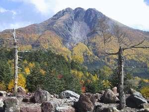 よしの山荘:9月下旬より紅葉が始まり10月いっぱい楽しめます。