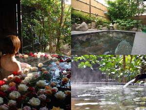 旅館 大和屋:貸切風呂では花風呂が楽しめます(バラ湯)第1.2.3木・金曜、(胡蝶蘭湯)第4木・金曜日