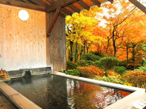 強羅温泉 自家温泉掛け流しの宿 強羅環翠楼:*紅葉露天・絵画のように色鮮やかな紅葉を臨みながら湯ったりとお過ごしください。
