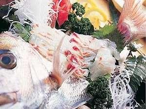 活魚料理 民宿みたき