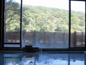 白濁の鹿の湯源泉かけ流しの宿 中藤屋旅館
