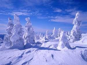 ラフォーレ蔵王リゾート&スパ:すみかわスノーパークでは樹氷観賞が出来ますよ!