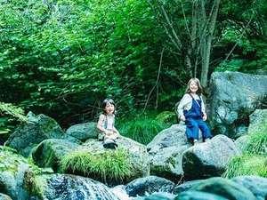 八ヶ岳の豊かな自然を満喫するアクティビティ