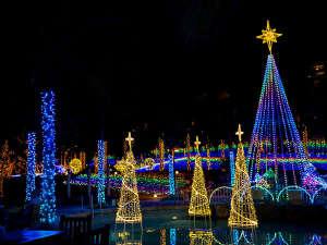 カヌチャベイホテル&ヴィラズ:【スターダストファンタジア】カヌチャリゾートの冬を彩るイルミネーションイベント