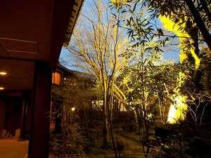 山荘 天水:エントランスの木々がライトアップされ、天水の夜を一層幻想的に演出します
