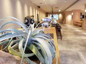 BRENZA HOTEL / ブレンザホテル:フロント