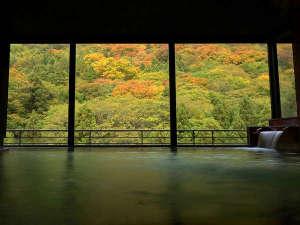くつろぎ宿 千代滝:【遊月の湯 大浴場】ダイレクトに広がる山麓の風景。