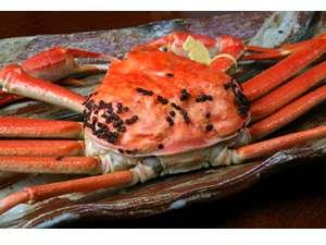 ◆1.2キロ以上保証!◆黄タグ付き「越前蟹フルコース】♪特大のずっしりな重さに驚き!1人1杯使用