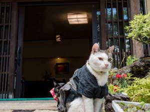 草津温泉 中村屋旅館の写真