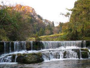 宮島温泉 滝乃荘:宮島峡一の滝付近の紅葉。当館からお散歩程度の距離です
