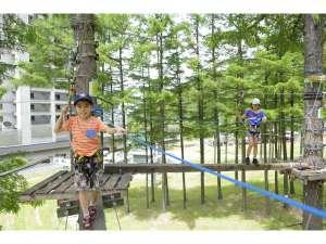 ホテルリステル猪苗代 本館コンドミニアム :小学生以上のお子様からお楽しみいただけるツリーアドベンチャー
