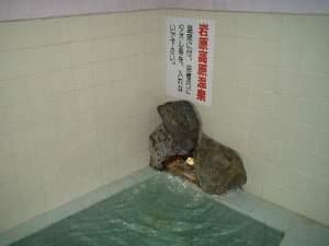 岩原ニューホテル:岩原天然温泉!