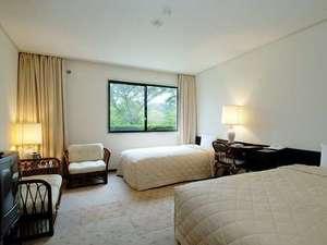 鶴舞ムーンレイクホテル:広々としたツインルーム。