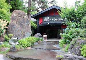 薬師の霊泉 恵那ラヂウム温泉館の写真