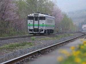 塩狩ヒュッテ:塩狩一目千本桜とJR宗谷本線