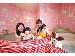 ペット同室宿泊パイオニアの宿 きぬ川国際ホテル:家族風呂「DOG」