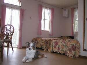 愛犬の宿 ラブリーワンズ