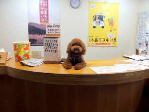 ホテルシェーヌ木島平:*ペットとご宿泊いただけるお部屋もございます♪