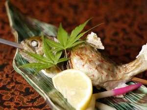 湯泉地温泉 十津川荘:ぷりぷりほくほくなアマゴの塩焼き