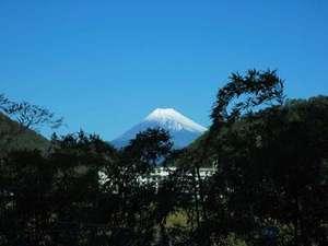富士山(ウッドデッキ)より撮影