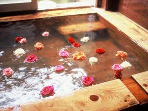 家族の思い出をつくる宿 天草海の幸 旅館伊賀屋