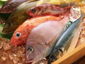 湯快リゾート 嬉野温泉 嬉野館:【ご当地贅沢バイキング】ピチピチの魚介類! ※イメージ画像