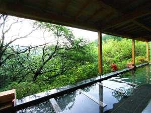 熱海 森の温泉ホテル:男性用露天風呂